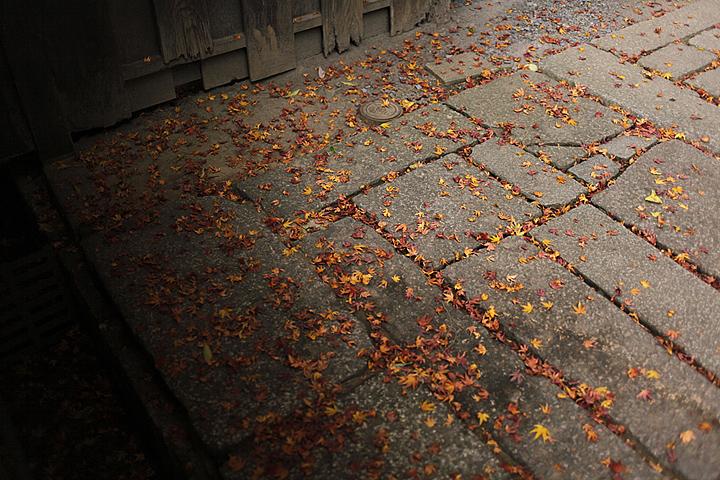 2010-11-20_10-22-45.jpg